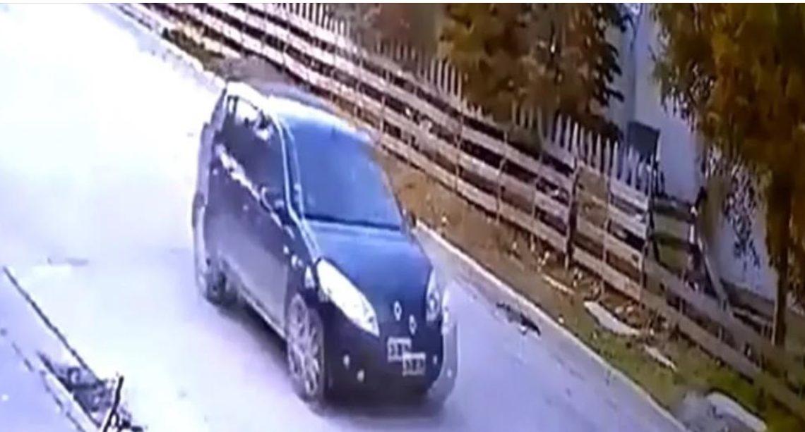 #Urgente: Buscan A Conductor Que Atropello Un Perrito Y Huyo.