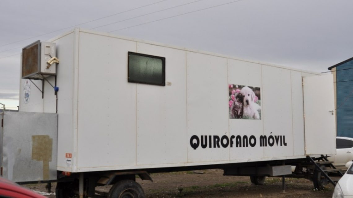 Quirófanos móviles en la Margen Sur y Barrio Mutual: horarios para la castración de perros y gatos