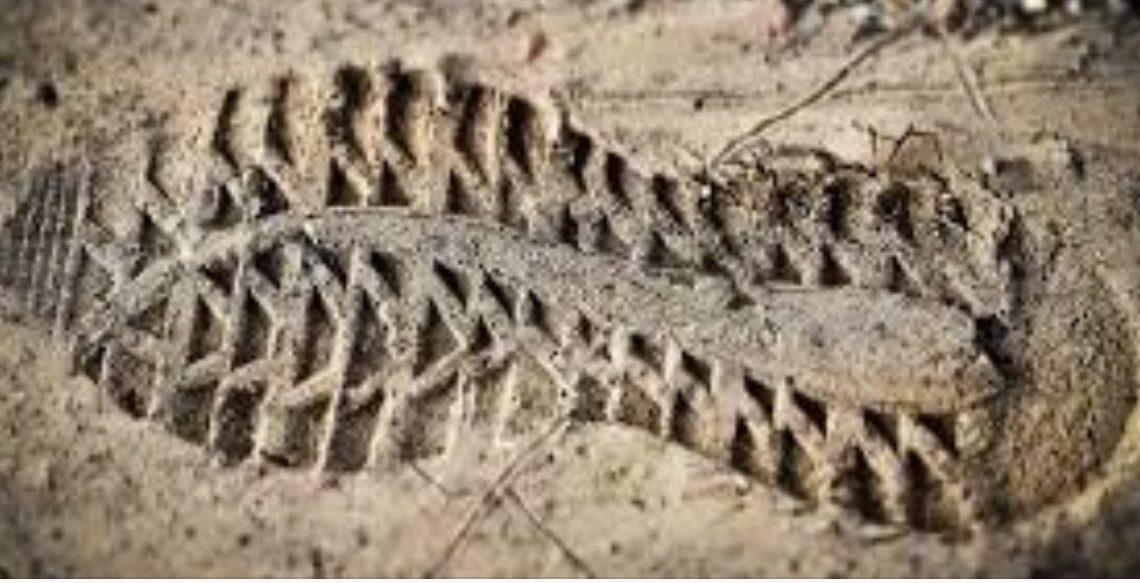 La Policía de la provincia identificó el «modelo y tipo» de calzado con el que patearon en la cabeza a Fernando Báez Sosa