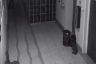 [VIDEO] El Escalofriante Video De Un Fantasma Dentro De Una Escuela Embrujada