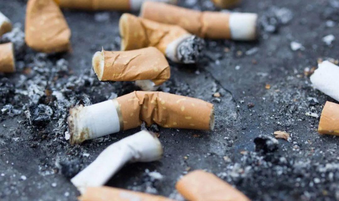 Prohíben por ley arrojar colillas de cigarrillos en la vía pública