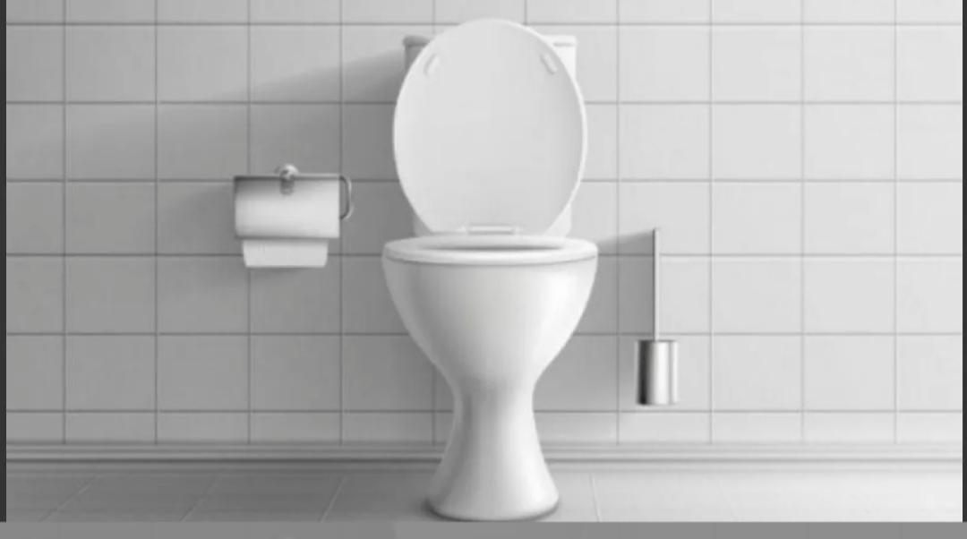 Día del Inodoro: el 14% de los argentinos no tiene acceso a un baño digno