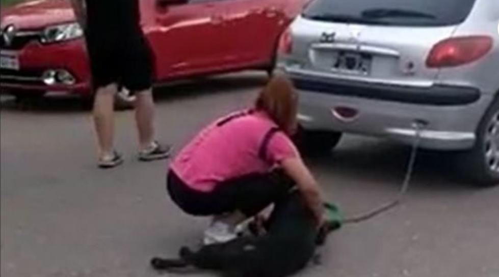 Una mujer ató a su perro al auto y lo arrastró varias cuadras