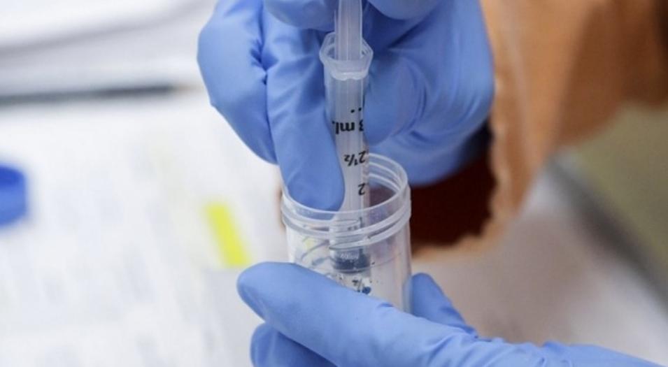 La OMS advirtió que las vacunas «no erradicarán el coronavirus» hasta que no se sepa cómo se transmite