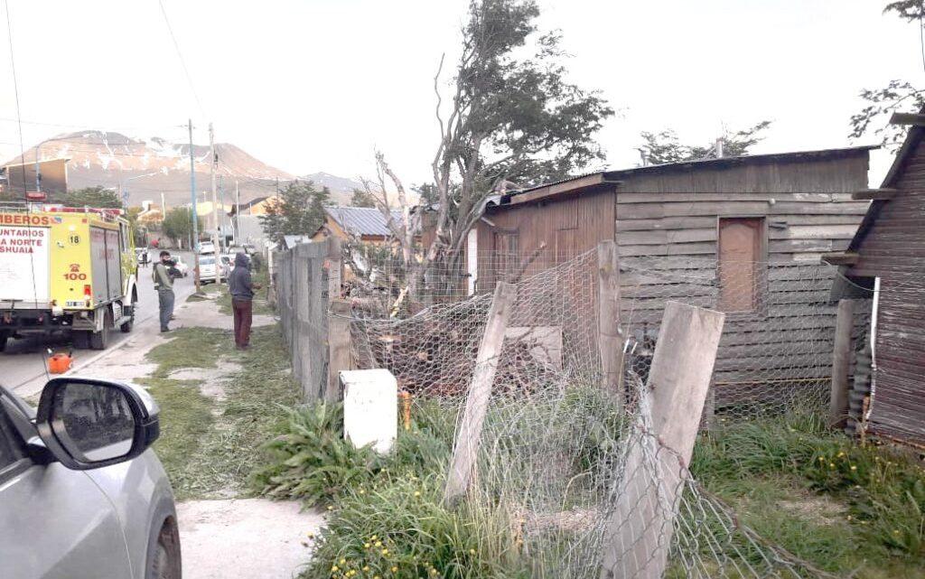 Fuertes ráfagas provocaron la caída de un árbol sobre una casa