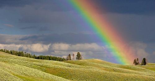 Una familia encontró (literal) el final de un arcoíris