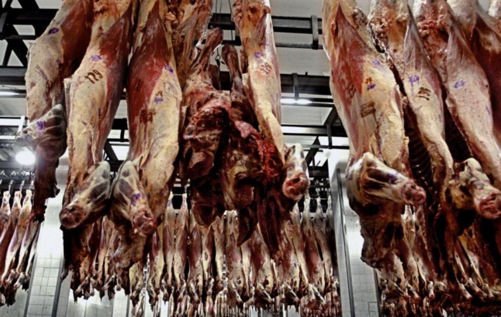 Asado, vacío y matambre: el plan para que haya «carne barata » en las fiestas