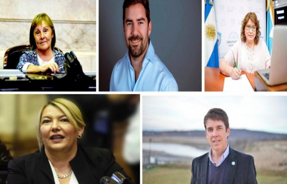 Legalización del aborto: cómo votaron los diputados fueguinos