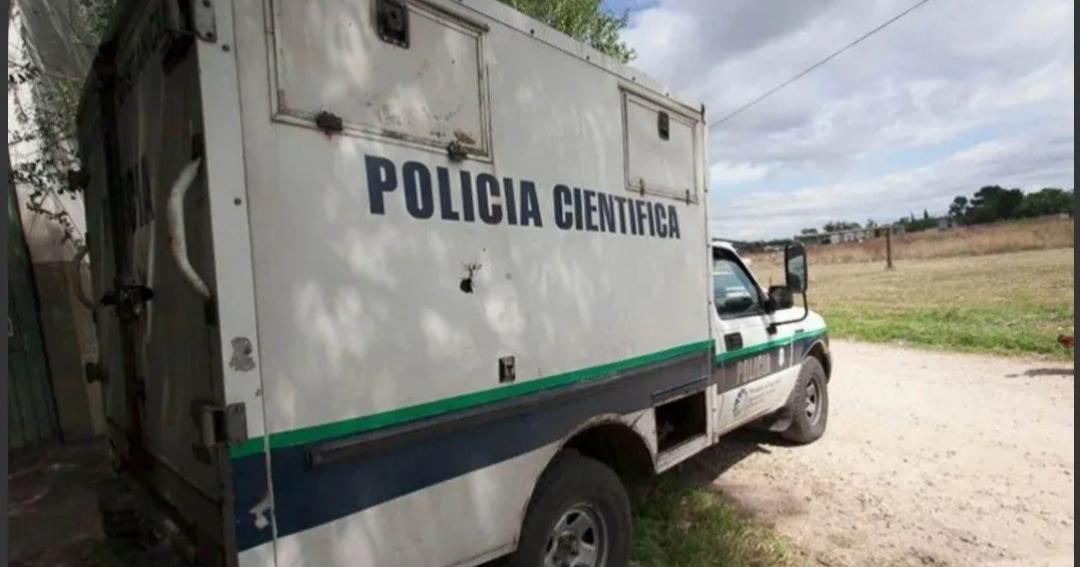 Horror en Mar del Plata: asesinaron a un hombre y una jauría devoró su cadáver