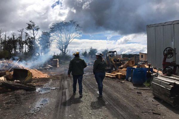 Industria maderera: El Ministerio de Trabajo realiza inspecciones en aserraderos de Tolhuin