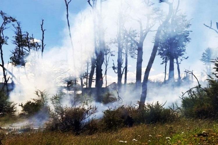 Nuevo incendio por fogón mal apagado